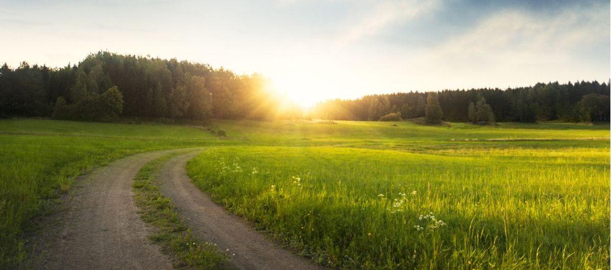 « J'ai compris que terre, végétaux, animaux, humains nous étions tous des êtres vivants : que la terre nous accueillait et que c'était à nous de vivre en bonne intelligence dans le respect de tous. » MARCEL THÉBAULT